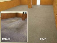 moose-jaw-carpet-cleaning-seals-restorations.jpg